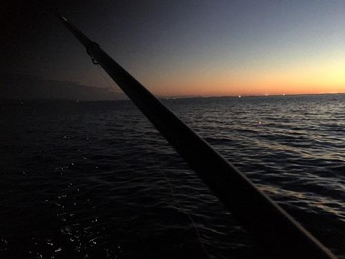 イカのウキ釣り