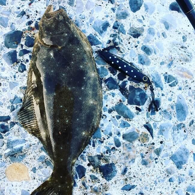 釣具屋で売れ残っていた可哀想な黒いジグ(スローブラッドキャスト)を使ってヒラメを狙ってきた。