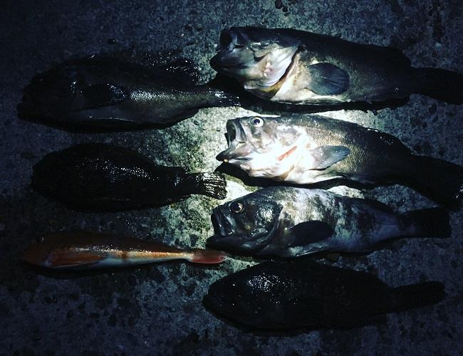 6種目釣り