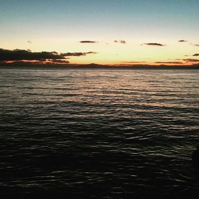 綺麗な海でヤリイカ調査