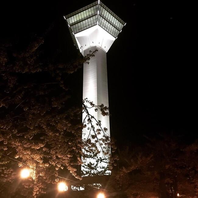 神社方面アングル。五稜郭タワーと夜桜