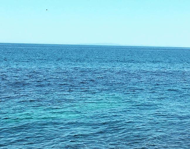 【2019年5月】日本海の釣り。ホッケメインで狙うもヒラメ祭り。