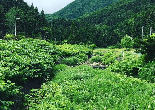 福島町岩部のさき