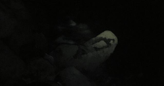 夜の漁港のテトラ