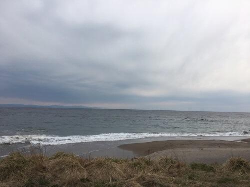 函館のサクラマスサーフ