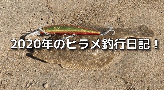 ヒラメ釣行記