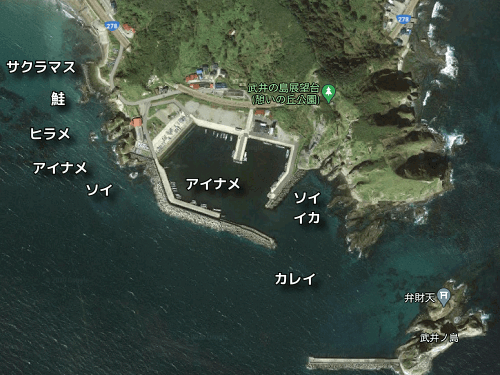 戸井漁港の釣り