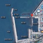 函館の入船漁港の釣りポイント!とても素敵な漁港です