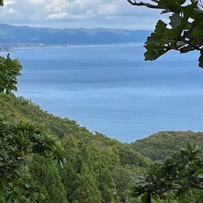 函館山登山道から見た海